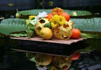 Výstava citrusů a jiných subtropických a tropických užitkových rostlin