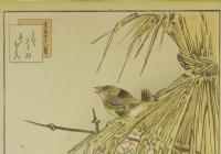 Zimní motivy a japonské novoroční rituály