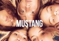 Biograf v knihovně: Mustang