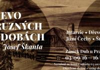 Josef Škanta — Dřevo v různých podobách