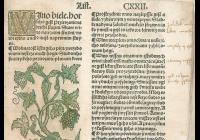Víno a knihy - věda, právo, krásná literatura, umění a réva vinná ze všech psaných stran