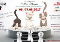 XIII. a XIV. Mezinárodní výstava koček