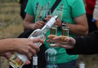 Vinařský výlet po krásách Lednicko-valtického areálu
