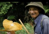 Mr. Tomka: Obrazy odjinud (Vietnam a Bali)