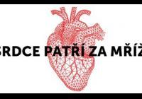 Srdce patří za mříže