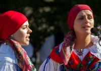 Folklorní regiony Čech, Moravy a Slezska – Strážnicko