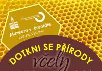 Dotkni se přírody - včely - Zámek Bruntál