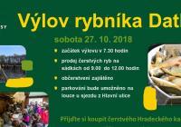 Výlov rybníka Datlík - Hradec Králové