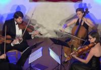 Cordial String Quartet