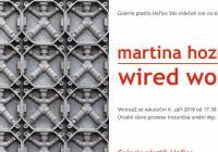 Martina Hozová / Wired World
