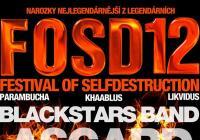 Festival Of Selfdestruction - Brno Jundrov