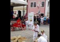 Jihočeský festival zdraví v Třeboni