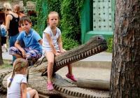 Komentovaná krmení v Zoo Olomouc