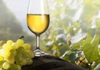 Vinobraní na hradě Kunětická hora