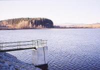 Výlov rybníka Bělčický velký