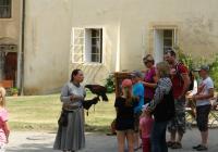 Sokolnické ukázky a šermířská vystoupení na Křivoklátě