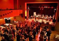 Ples Města Veselí nad Lužnicí