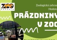 Prázdniny v Zoo Hodonín
