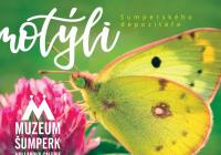 Motýli šumperského depozitáře