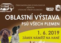 Klubová výstava psů - Zámek Náměšť na Hané