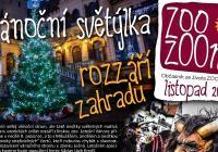 Rozsvícení vánočního stromu v Zoo Zlín