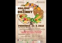 Krajské dožínky - Pardubice