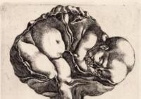 Oldřich Kulhánek / Malá anatomie zdrojů