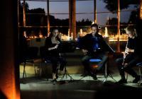 Akademie komorní hudby v Synagoze Kolín
