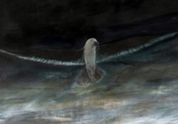 Matouš Tichý & Eliáš Urban / Sargasové moře