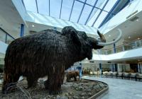 Moravské zemské muzeum virtuálně