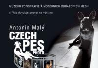 Czech Pes Photo