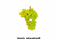 Znojemské historické vinobraní 2022