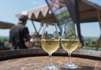 Víno a jídlo na zámku Kozel 2021