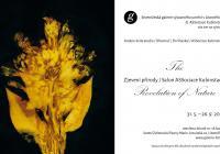 Andere Seite studio: Zjevení přírody / Salon ASSociace...
