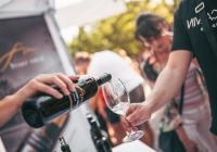 Písecký festival vína 2021