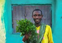 Individuální studijní plán - Etiopie
