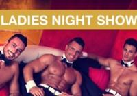 Ladies Night Show Magic Mike