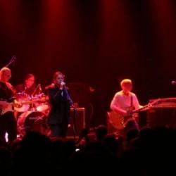 Velvet Underground Revival