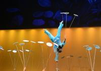 Čínský národní cirkus předvede českým divákům největší show své historie!
