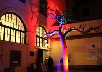 Už zítra se Praha rozzáří všemi barvami! Začíná druhý ročník festivalu světla SIGNAL