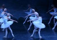 Slavný Moscow City Ballet přijede do Prahy a Ostravy s Labutím jezerem!