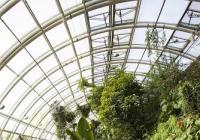 Vánoční dárek od Botanické: Vstup do Fata Morgany zdarma!