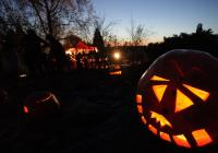 Trojskou botanickou zahradu rozzáří v pátek halloweenská světla