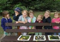 Dětské studio Žofka