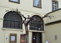 Národní knihovna ČR, Praha 1