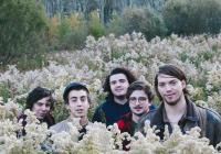 V lednu dorazí do Prahy americká kapela Twin Peaks. S sebou doveze svou poslední desku