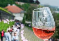 Svátek růžových vín na Pražském hradě
