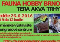 Fauna hobby Brno