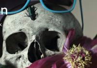 Národní divadlo Brno chystá skandální pojetí Dona Juana