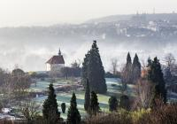 Tvůrčí dílny a tropy v zimě. Botanická zahrada nabízí zajímavý adventní program